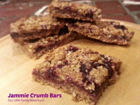 Homemade Snack Bars - Jammie Crumb Bars - Fill with any flavor of jam for a personalized snack bar.