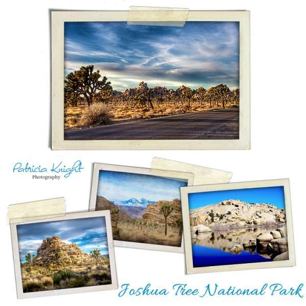 Come and explore all the great places and spaces Joshua Tree, CA has to offer. Here are our picks for the best things inside Joshua Tree National Park, camping, and surrounding area.