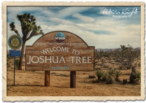 Hometown Adventure Series-JoshuaTree, CA