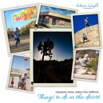 Best Places to Explore Inside Joshua Tree National Park and Surrounding Area