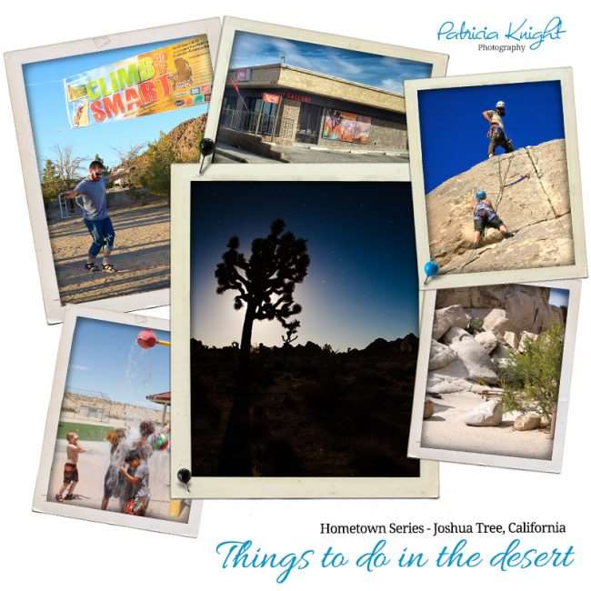 Find Family Adventure & Explore Joshua Tree, California