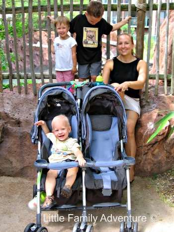 Disney with Young Children- You'll need a good stroller