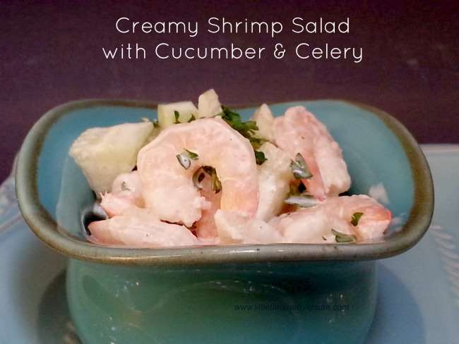 Shrimp Salad with Cucumbers and Celery - A healthy shrimp salad you'll love.