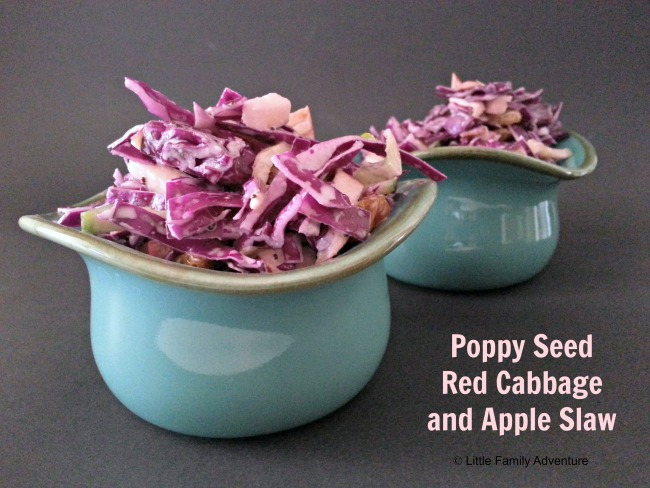 Poppy Seed Red Cabbage and Apple Slaw - A healthy and delicious side dish perfect for summer picnics, bbqs, or a quick side. #realfood #cleaneating