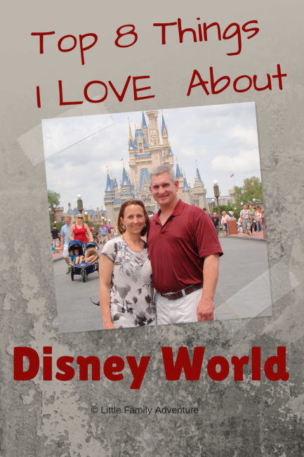 Top 8 Things I Love About Disney World