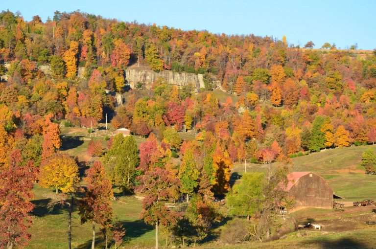 5 Reasons to Visit a Dude Ranch - Fall Foliage - Horseshoe Canyon #travel #dudrance #adventure #familyfun