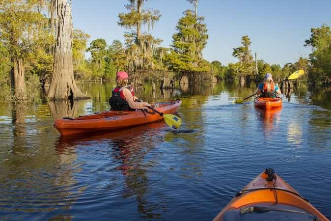 Kayaking in Gulf County, Florida
