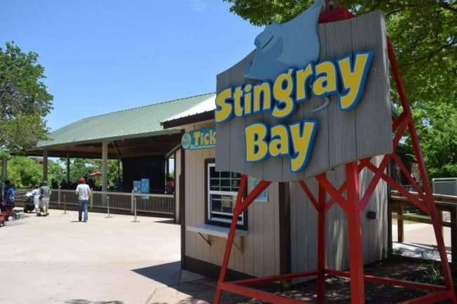 Stingray Bay at OKC Zoo