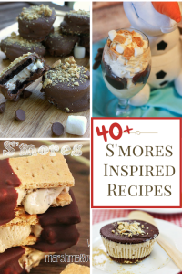 40+ S'mores Inspired Recipes -Frozen Treats
