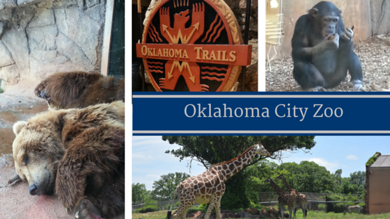 Find your Adventure Road in Oklahoma City at the Oklahoma City Zoo and Botanical Park