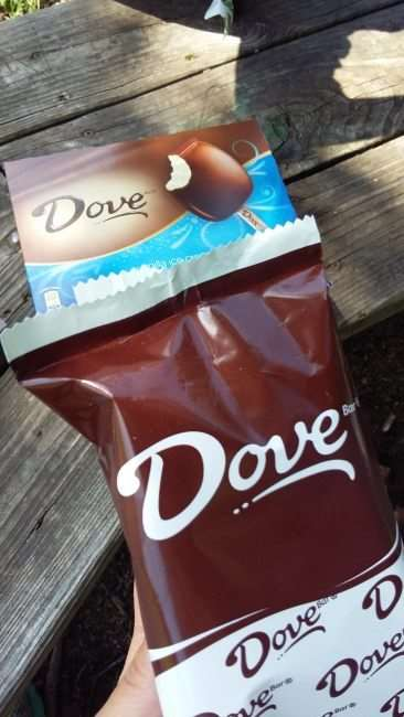 How Will You Celebrate National Ice Cream Month? Enjoy a DOVEBAR anywhere.. #IceCreamMonth #ad #Sponsored