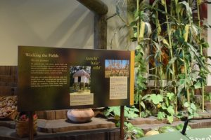 Get on the Adventure Road to the Chickasaw Cultural Center - Travel to Sulphur, Oklahoma to experience the history and culture of the Chickasaw people. It's a fun and educational vacation destination.