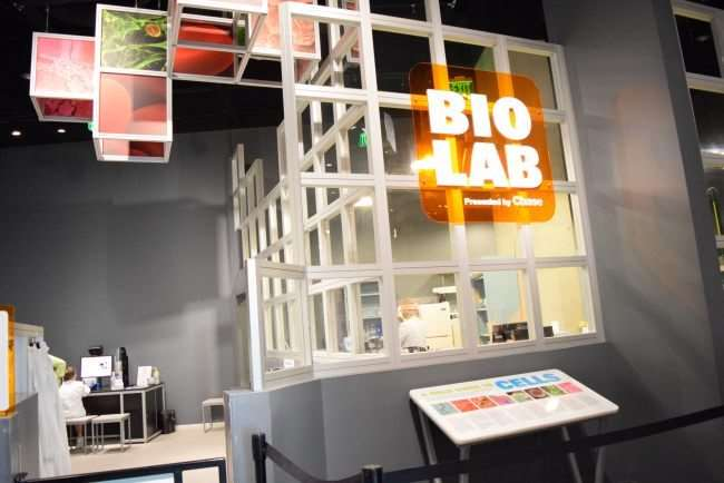 Bio Lab at Perot Museum of Nature and Science - Dallas