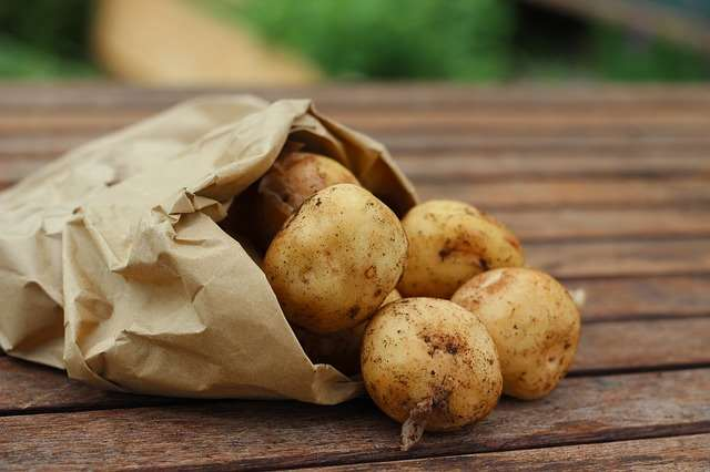 To keep potatoes from budding, place an apple in the bag with them - 20+ Genius Kitchen Tips and Tricks to save time & money in the kitchen