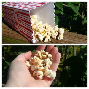 Campfire Popcorn- Foil Meals for Camping
