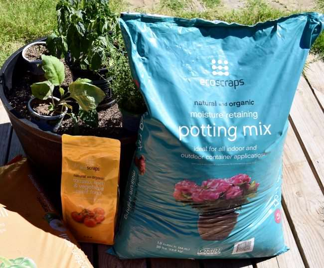 Container Garden with potting mix