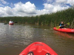 Kayaking in OKC - Stinchcomb Wildlife Refuge