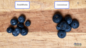 Blueberries from both containers - The Secret to Keeping Summer Produce Fresher Longer - Learn how you can keep fruits and vegetables longer without going bad and save too. Get our produce shelf life and storage infographic as well as take the #LongLiveProduce Challenge #adBlueberries from both containers - The Secret to Keeping Summer Produce Fresher Longer - Learn how you can keep fruits and vegetables longer without going bad and save too. Get our produce shelf life and storage infographic as well as take the #LongLiveProduce Challenge #ad