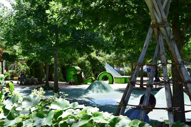 Children's playground with trees and playscapes