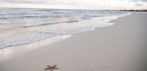 Must See Travel Spots: Gulf County, FL - The area boosts 244 miles of beautiful coastline