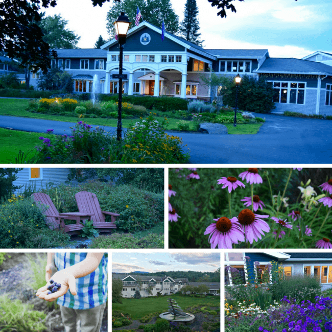 Take a Stonyfield Farm Tour - Organic Dairy Farms in Vermont - Stoweflake Resort in Stowe, Vermont