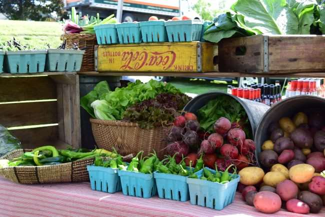 Ultimate Guide to Travel Sustainably - The Best Green Travel Tips for Families - Find a farmer's market and eat local
