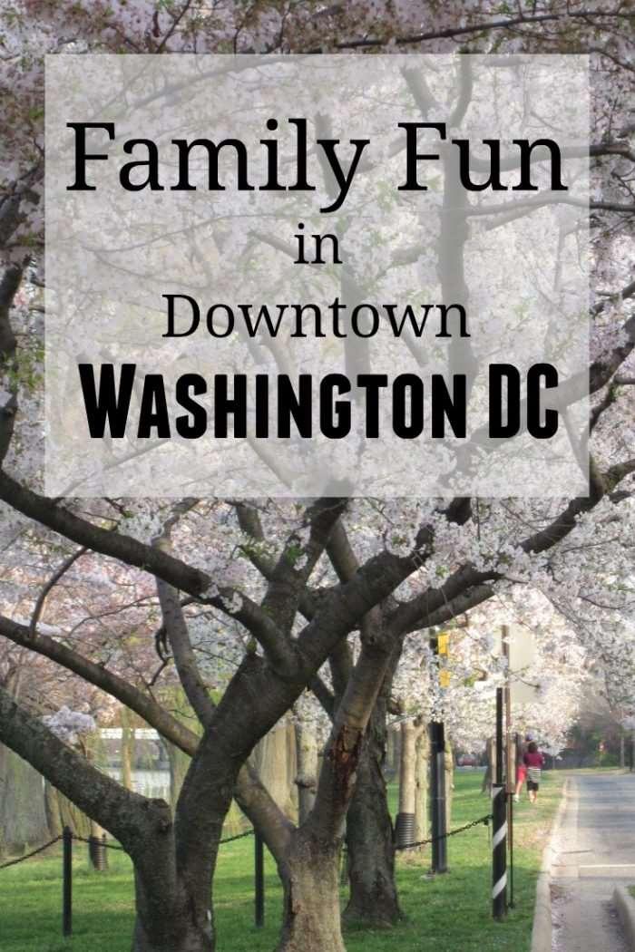 Family Fun in Downtown Washington DC - family travel