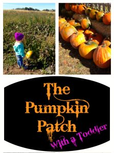 Head to the Pumpkin Patch With a Toddler - Start a Family Tradition and show children where their food comes from and have a little fun