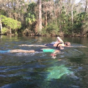 Swim with Manatees in Florida - 15 Best Vacations Spots for Outdoor Families - See where other outdoor families love to travel to and explore. These travel destinations will inspire you to get out and start exploring with your kids.