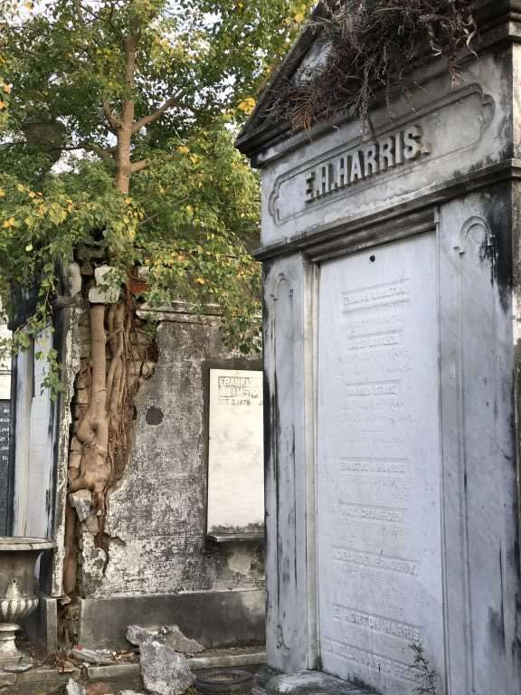 "Best of New Orleans with Kids in 3 Days -Take the St. Charles streetcar to tour the ""Cities of the Dead "". Lafayette #1 cemetery and others are full of history"
