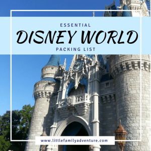 Essential Disney World Packing List - helps organize/pack clothing, first aid supplies, things for the kids, and more. It even helps me load my in park bag with park essentials.
