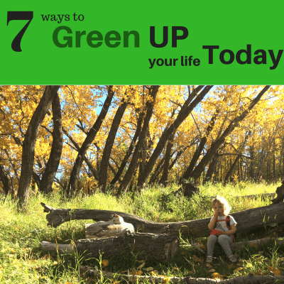 7 Ways How You Can Go  Green  for Earth Day and Every Day