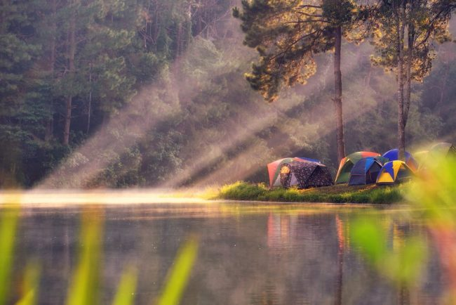 Tents along a river in the sunlight