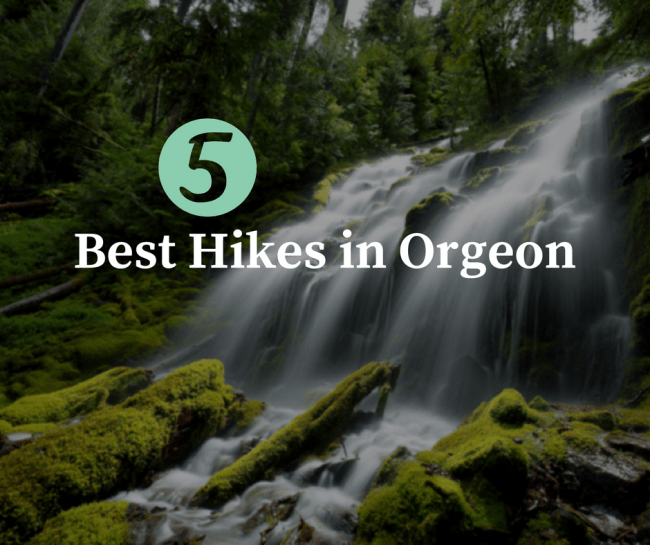 5 of The Best Hikes in Oregon that you'll want to take on your next outdoor adventure
