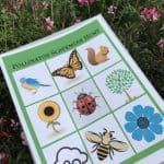 Printable Pollinator Scavenger Hunt