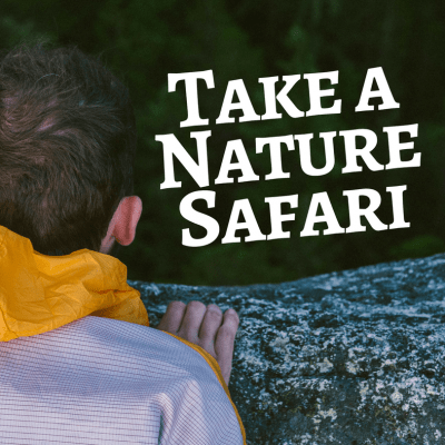 Take a Nature Safari & Create these Nature Rubbings