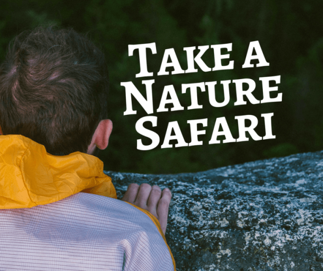 Nature Rubbing - Go on a nature safari without going to far from home to create this simple craft activity