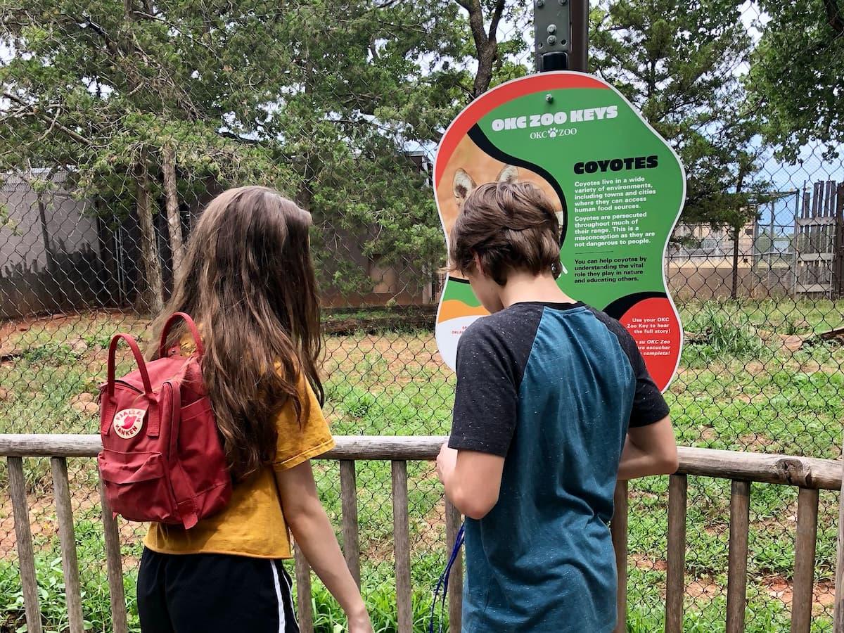 teens as a display