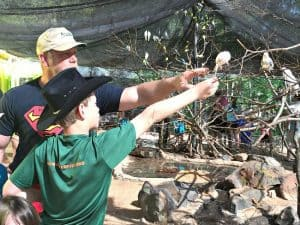 Caldwell Zoo Tyler Texas Feed Birds with Children