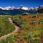 The Best Tips for Enjoying your Colorado Summer Vacation