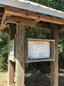 Exploring the Gulf State Park and Backcountry Trail - 25 miles multi-use trail system that is great for cyclists, runners, and nature walks