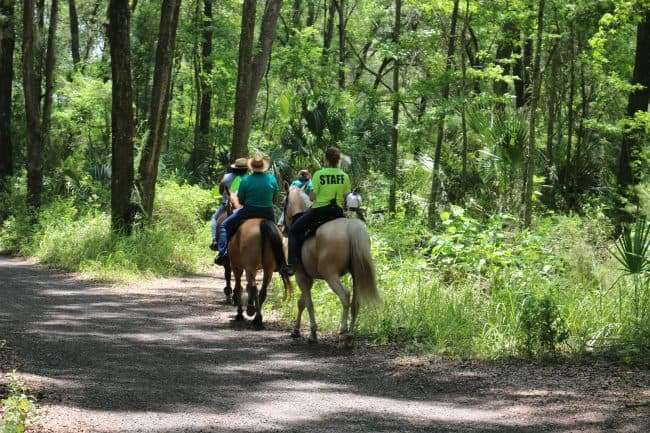Horse Back Riding - Get Ready for 3 Days of Outdoor Fun in Ocala/Marion County Florida