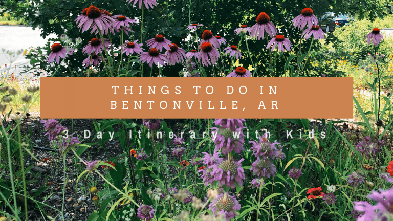 Things to Do in Bentonville, AR with Kids