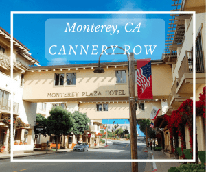 Have you done these things on Cannery Row in Monterey, CA? We share some of the best attractions, sites, and tips to see the MUST See spots in the area.