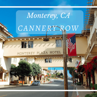 The Best Things To Do in Monterey's Cannery Row with Kids