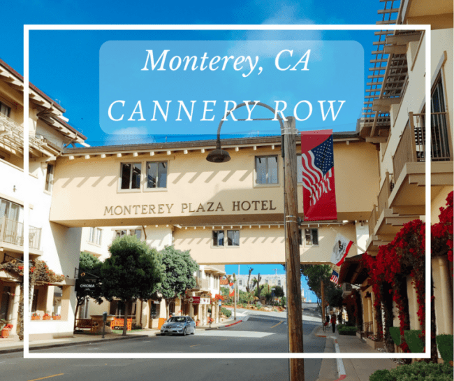 cannery row imagery Directed by david s ward with nick nolte, debra winger, audra lindley, frank mcrae monterey, california in the 1940's cannery row - the section of town where the now closed fish canneries are located - is inhabited primarily by the down and out, although many would not move away even if they could.