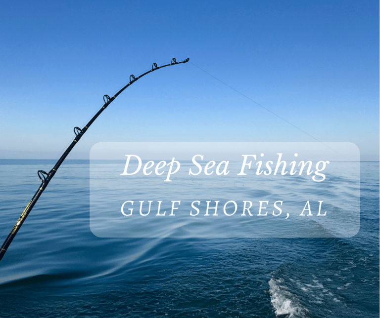 deep sea fishing in gulf shores alabama little family
