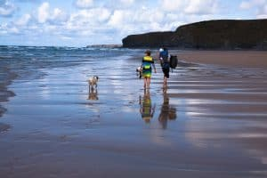 Summer Staycation Time - Tips to Make the Best of your City -