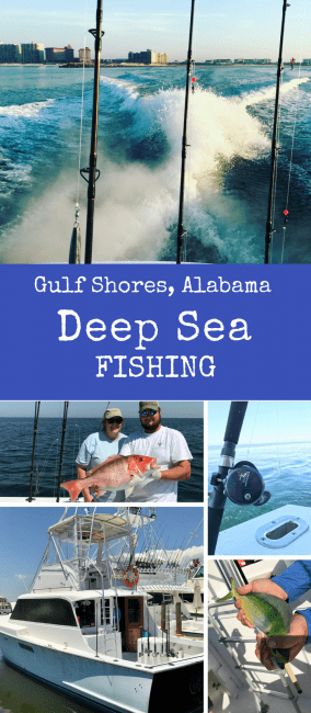 Deep Sea Fishing with Ocean Ox Charters