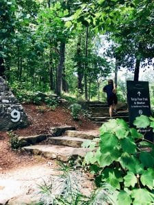 Walking Nature Trails at Crystal Bridges Museum of American Art - Enjoy 5 miles of easy park trails